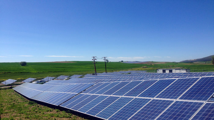 Solar Panel Success Stories and Project Deployments | Trina