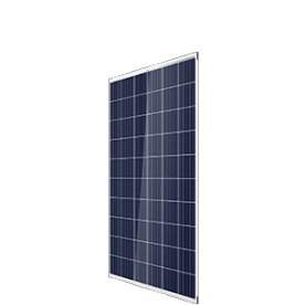 AU/DUOMAX-PEG5